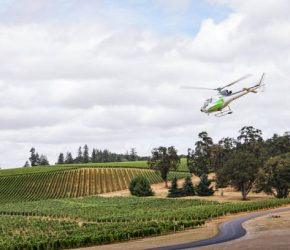 A helicopter takes off from a winery evoking wealth and tourism