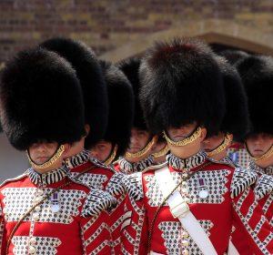 royal-guard-1815020_1920