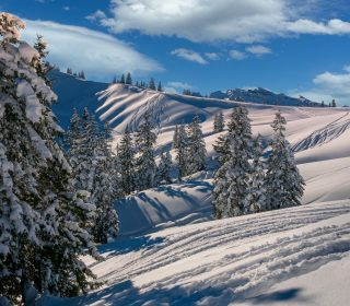 winter-4680713_1920